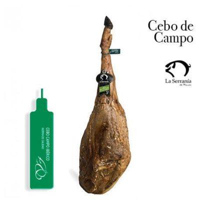 Jamón Ibérico de Cebo de Campo